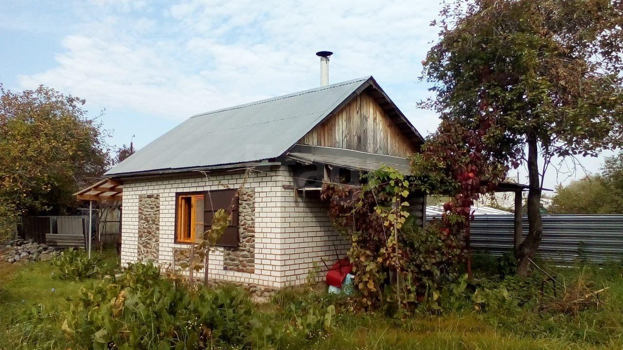 Александровка, , участок 667 сотка на продажу